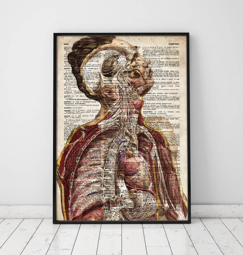 Human anatomy dictionary poster