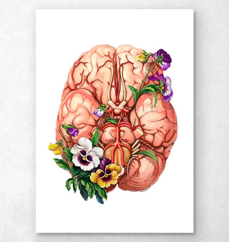 Brain with flowers anatomy art