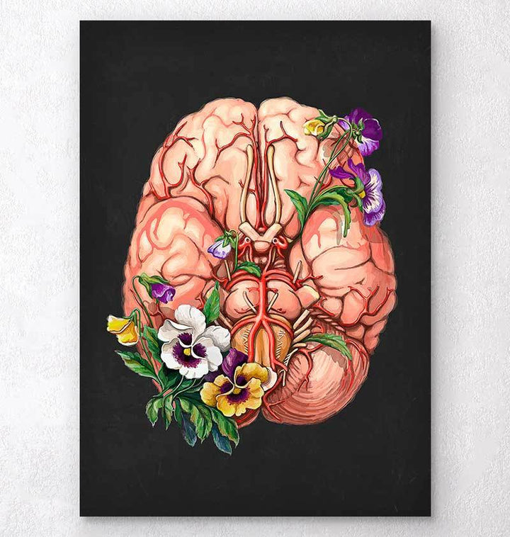 Floral anatomy of a brain