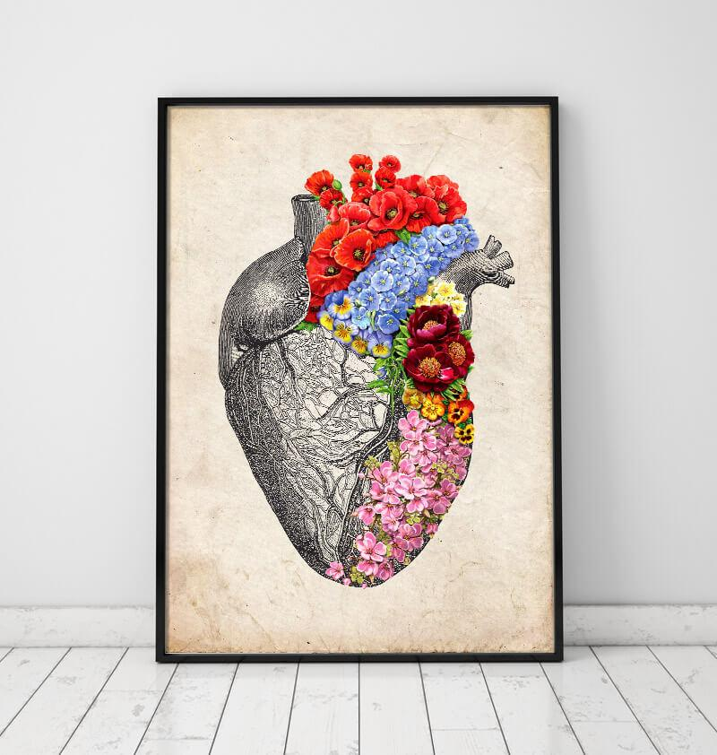Heart anatomy art prints