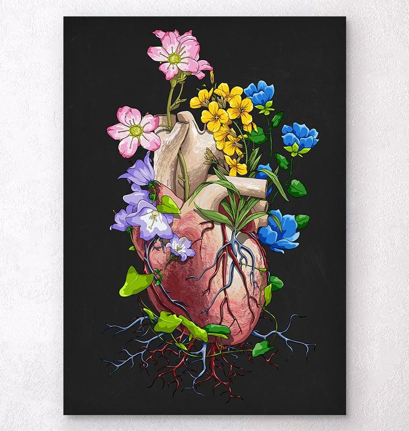 Heart anatomy art