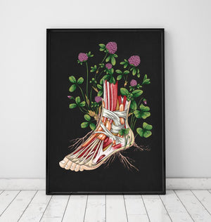 Floral foot anatomy poster