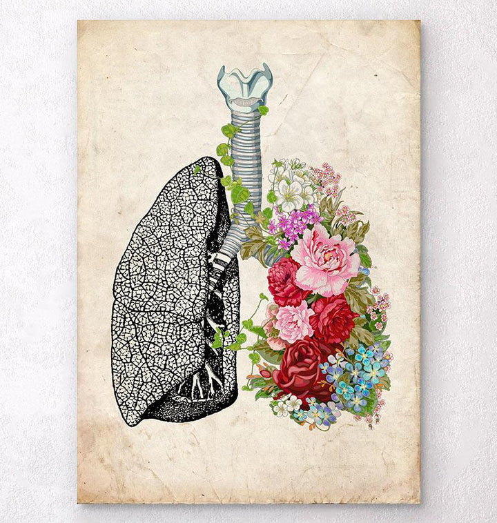 Anatomical lungs art