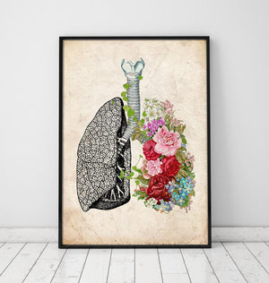 Vintage lung anatomy poster