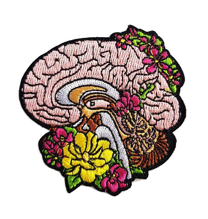 Anatomical brain patch