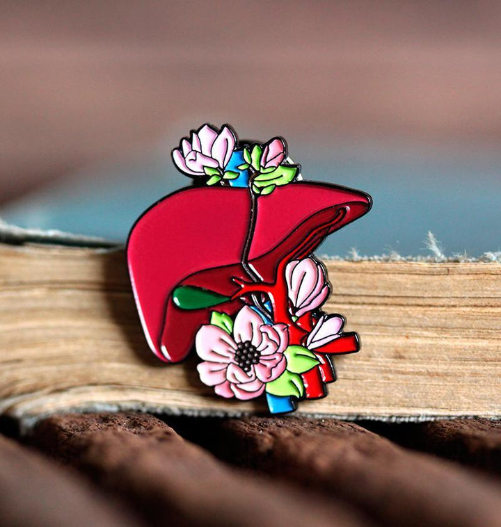 Anatomical liver pin