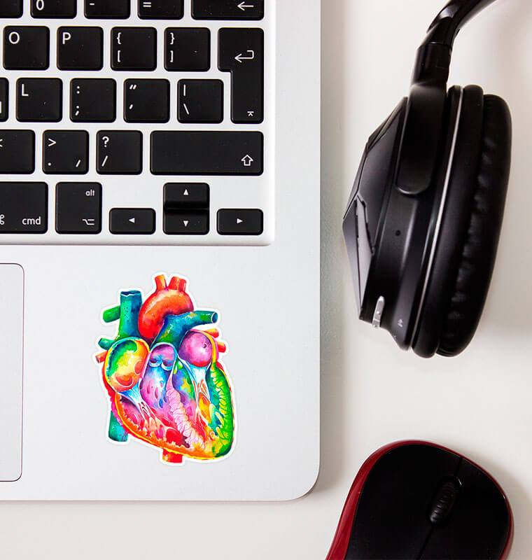 watercolor heart anatomy sticker by codex anatomicus