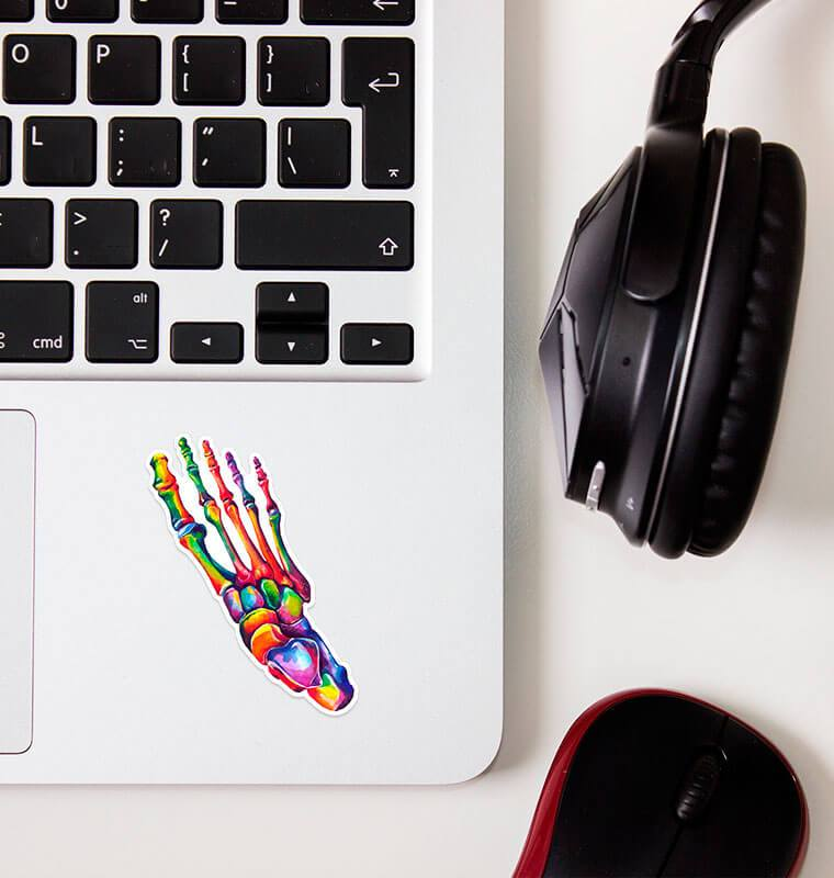 watercolor foot anatomy sticker by codex anatomicus