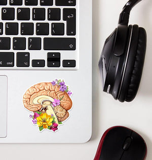 floral brain anatomy sticker by codex anatomicus