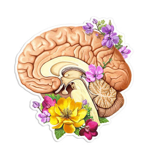Brain sticker