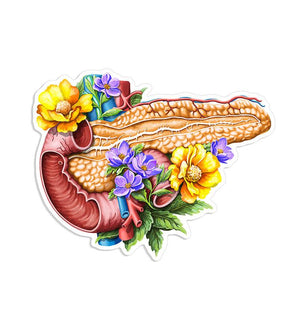 Pancreas sticker