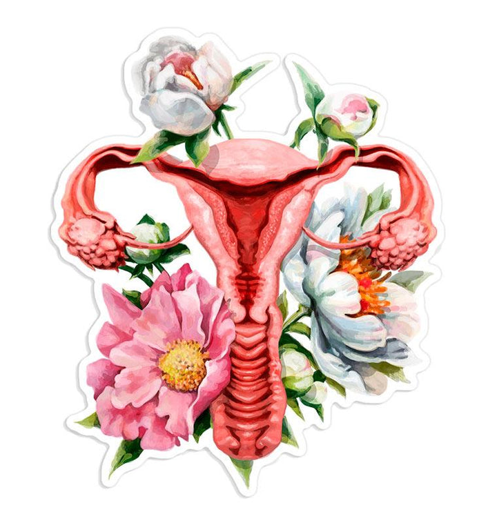 Anatomical uterus sticker
