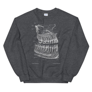 Dental Unisex Sweatshirt - Chalkboard