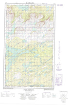 013J09W Lake Michael Canadian topographic map, 1:50,000 scale from Newfoundland Map Store