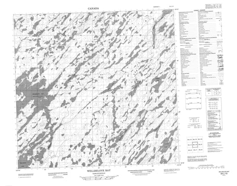 064L10 Wellbelove Bay Canadian topographic map, 1:50,000 scale