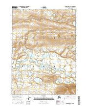Ambler River D-3 NE Alaska Current topographic map, 1:25000 scale, 7.5 X 7.5 Minute, Year 2016 from Alaska Maps Store