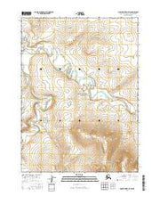 Ambler River D-4 SW Alaska Current topographic map, 1:25000 scale, 7.5 X 7.5 Minute, Year 2016 from Alaska Maps Store