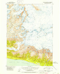 Bering Glacier A-3 Alaska Historical topographic map, 1:63360 scale, 15 X 15 Minute, Year 1950