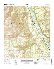 Healy D-5 NE Alaska Current topographic map, 1:25000 scale, 7.5 X 7.5 Minute, Year 2016 from Alaska Maps Store