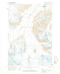 McCarthy D-6 Alaska Historical topographic map, 1:63360 scale, 15 X 15 Minute, Year 1960