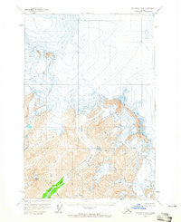 McCarthy D-8 Alaska Historical topographic map, 1:63360 scale, 15 X 15 Minute, Year 1960