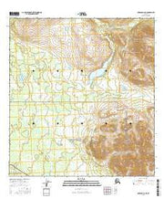 Nabesna C-6 NE Alaska Current topographic map, 1:25000 scale, 7.5 X 7.5 Minute, Year 2016 from Alaska Maps Store