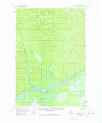 Sleetmute D-2 Alaska Historical topographic map, 1:63360 scale, 15 X 15 Minute, Year 1954