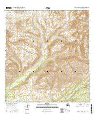 Talkeetna Mountains D-5 NW Alaska Current topographic map, 1:25000 scale, 7.5 X 7.5 Minute, Year 2016