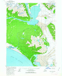 Yakutat A-1 Alaska Historical topographic map, 1:63360 scale, 15 X 15 Minute, Year 1959