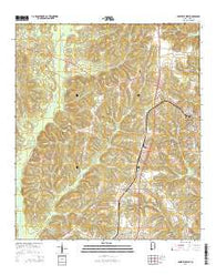 Abbeville West Alabama Current topographic map, 1:24000 scale, 7.5 X 7.5 Minute, Year 2014