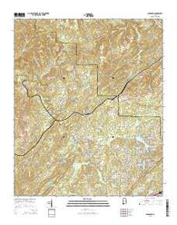 Abernant Alabama Current topographic map, 1:24000 scale, 7.5 X 7.5 Minute, Year 2014