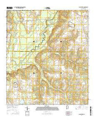 Clayhatchee Alabama Current topographic map, 1:24000 scale, 7.5 X 7.5 Minute, Year 2014