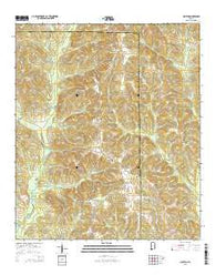 Clopton Alabama Current topographic map, 1:24000 scale, 7.5 X 7.5 Minute, Year 2014
