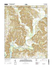 Salem Alabama Current topographic map, 1:24000 scale, 7.5 X 7.5 Minute, Year 2014 from Alabama Maps Store