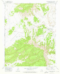 Toadindaaska Mesa Arizona Historical topographic map, 1:24000 scale, 7.5 X 7.5 Minute, Year 1972