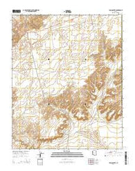 Tsin Naan Tee Arizona Current topographic map, 1:24000 scale, 7.5 X 7.5 Minute, Year 2014