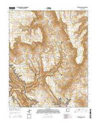 Whitmore Point Arizona Current topographic map, 1:24000 scale, 7.5 X 7.5 Minute, Year 2014