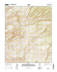 Wide Ruins Arizona Current topographic map, 1:24000 scale, 7.5 X 7.5 Minute, Year 2014