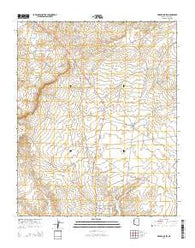 Wide Ruins SW Arizona Current topographic map, 1:24000 scale, 7.5 X 7.5 Minute, Year 2014