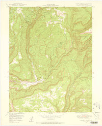 Calamity Mesa Colorado Historical topographic map, 1:24000 scale, 7.5 X 7.5 Minute, Year 1949