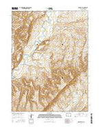 Ninemile Hill Colorado Current topographic map, 1:24000 scale, 7.5 X 7.5 Minute, Year 2016 from Colorado Map Store