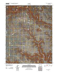 Pine Canyon Colorado Historical topographic map, 1:24000 scale, 7.5 X 7.5 Minute, Year 2010
