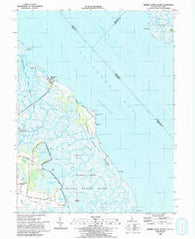 Bombay Hook Island Delaware Historical topographic map, 1:24000 scale, 7.5 X 7.5 Minute, Year 1993