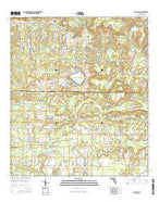 Alford SE Florida Current topographic map, 1:24000 scale, 7.5 X 7.5 Minute, Year 2015 from Florida Map Store