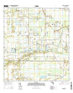 Arcadia SE Florida Current topographic map, 1:24000 scale, 7.5 X 7.5 Minute, Year 2015 from Florida Map Store