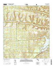 Bloxham Florida Current topographic map, 1:24000 scale, 7.5 X 7.5 Minute, Year 2015 from Florida Maps Store