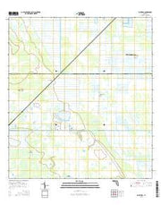 Bluefield Florida Current topographic map, 1:24000 scale, 7.5 X 7.5 Minute, Year 2015 from Florida Maps Store