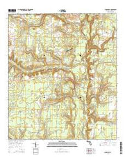 Clarksville Florida Current topographic map, 1:24000 scale, 7.5 X 7.5 Minute, Year 2015 from Florida Maps Store