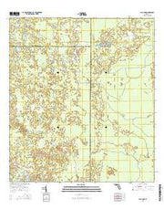 Clay Sink Florida Current topographic map, 1:24000 scale, 7.5 X 7.5 Minute, Year 2015 from Florida Maps Store