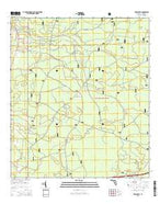Deep Creek Florida Current topographic map, 1:24000 scale, 7.5 X 7.5 Minute, Year 2015 from Florida Map Store